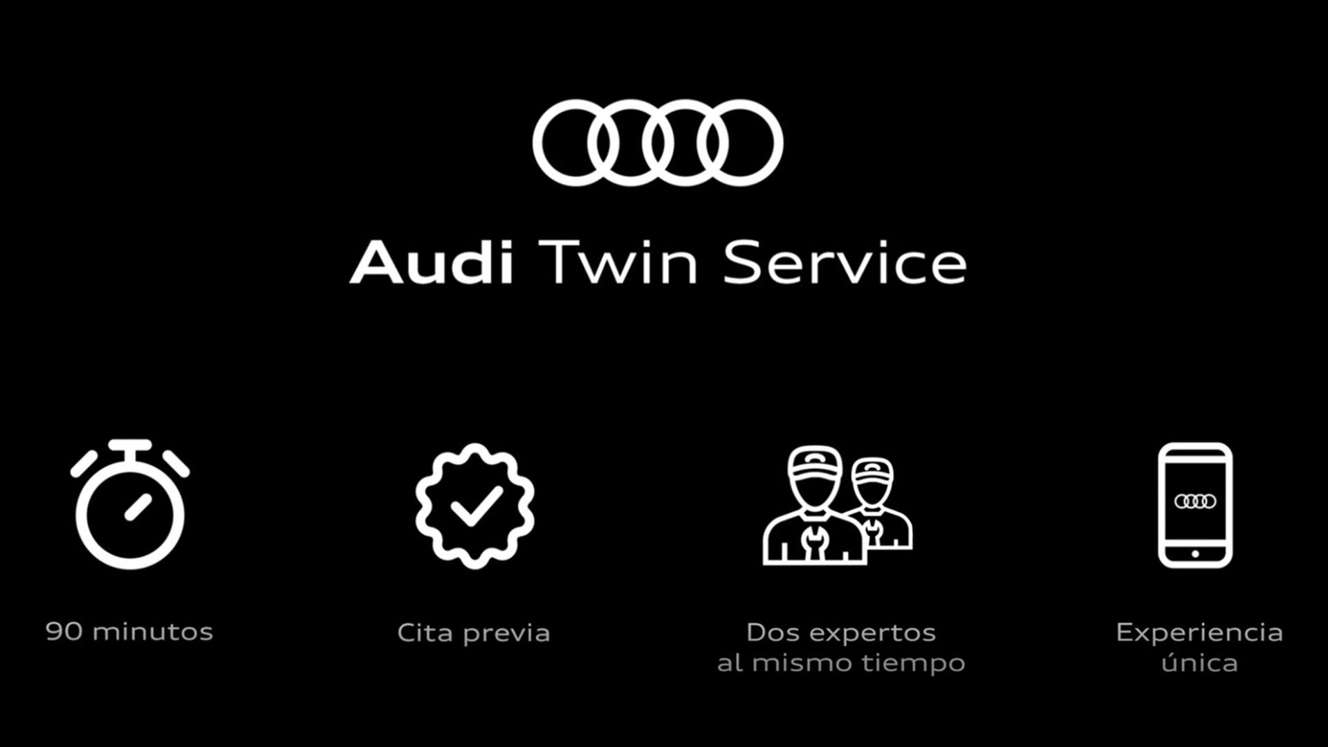 Audi-Twin-Service
